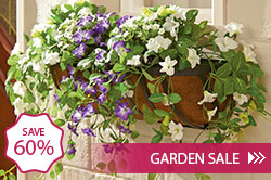 Garden Sale - Save 50% - Shop Now