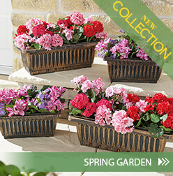 New Collection - Spring Garden »